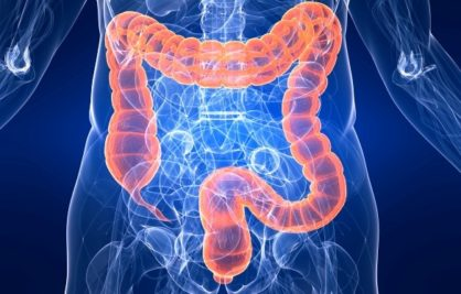 The Fascinating World of Your Colon